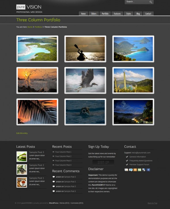 Purevision by ThemeForest
