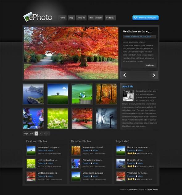 ePhoto-Elegant Themes